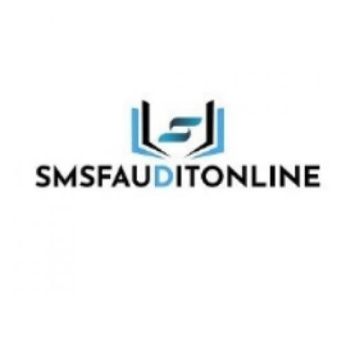SMSF AUDIT  ONLINE